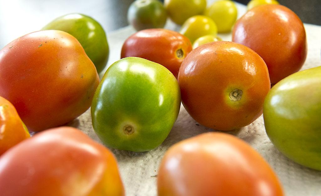 Tipp: Grüne Paradeiser (Tomaten) einfach nachreifen lassen . . .