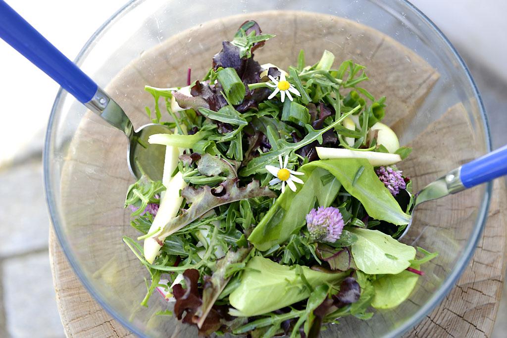 Mein Waldviertler-Frühsommer-Salat . . .